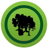 Forstwirtschaftliche Dienstleistungen